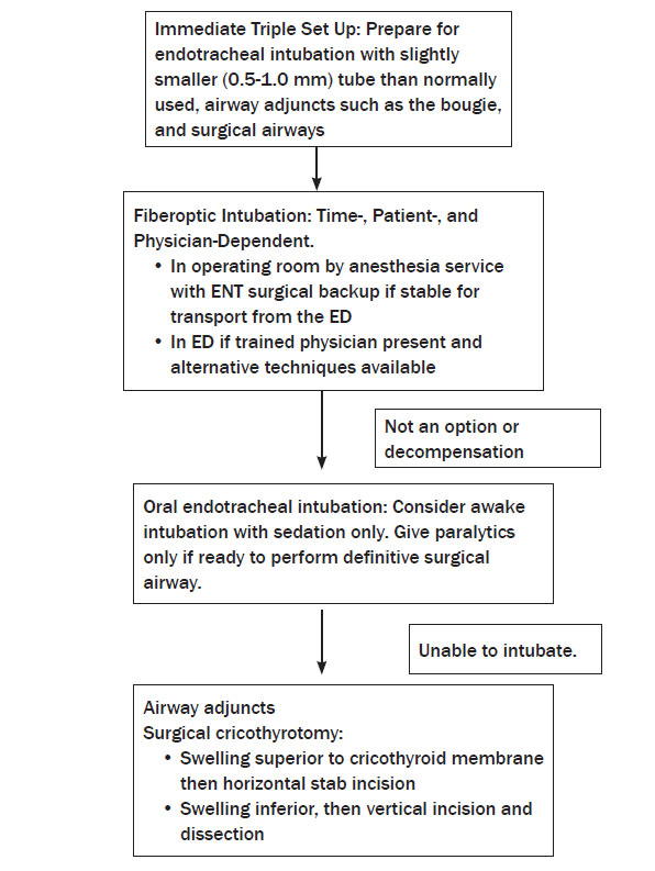 Updates in ent emergencies tales from the trenches 2010 11 08 fiberoptic intubation time patient and physician dependent fandeluxe Gallery