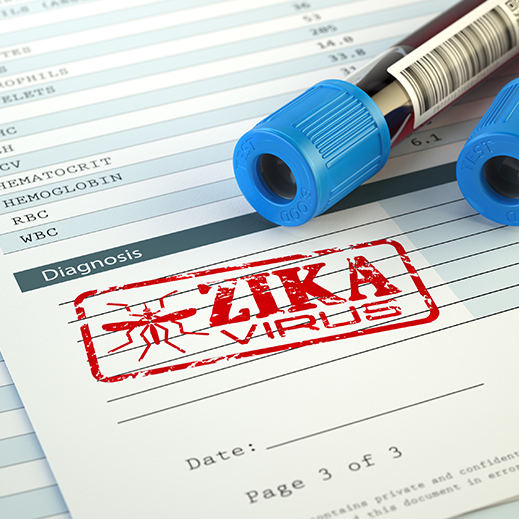 With New Tampa Case Zika Seeks Foothold, but Many States have Time on Their Side