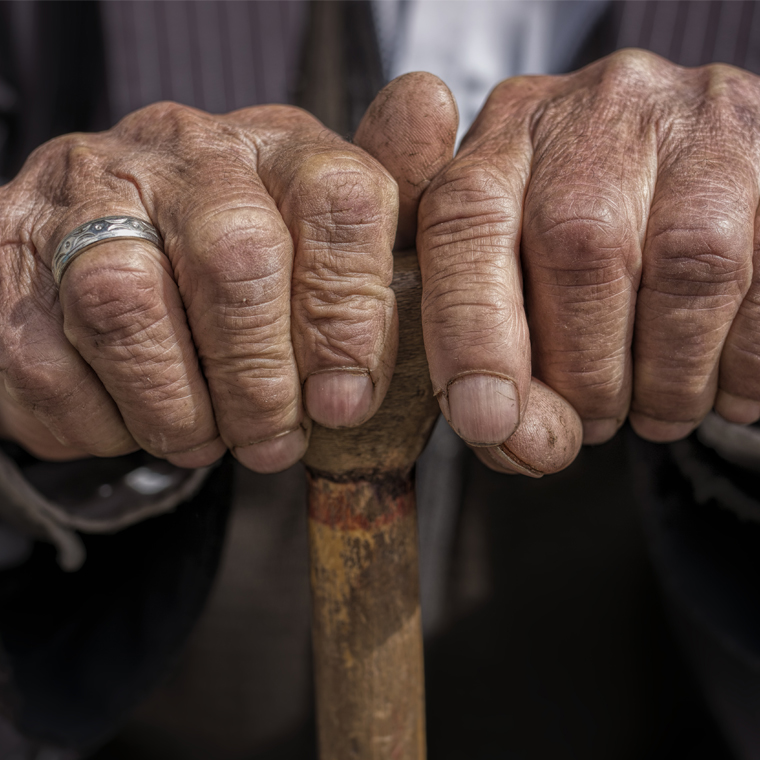 elderly abuse and thesis Free essay: elder abuse suffered at the hands of family members is quickly becoming a major societal problem that requires immediate attention the american.