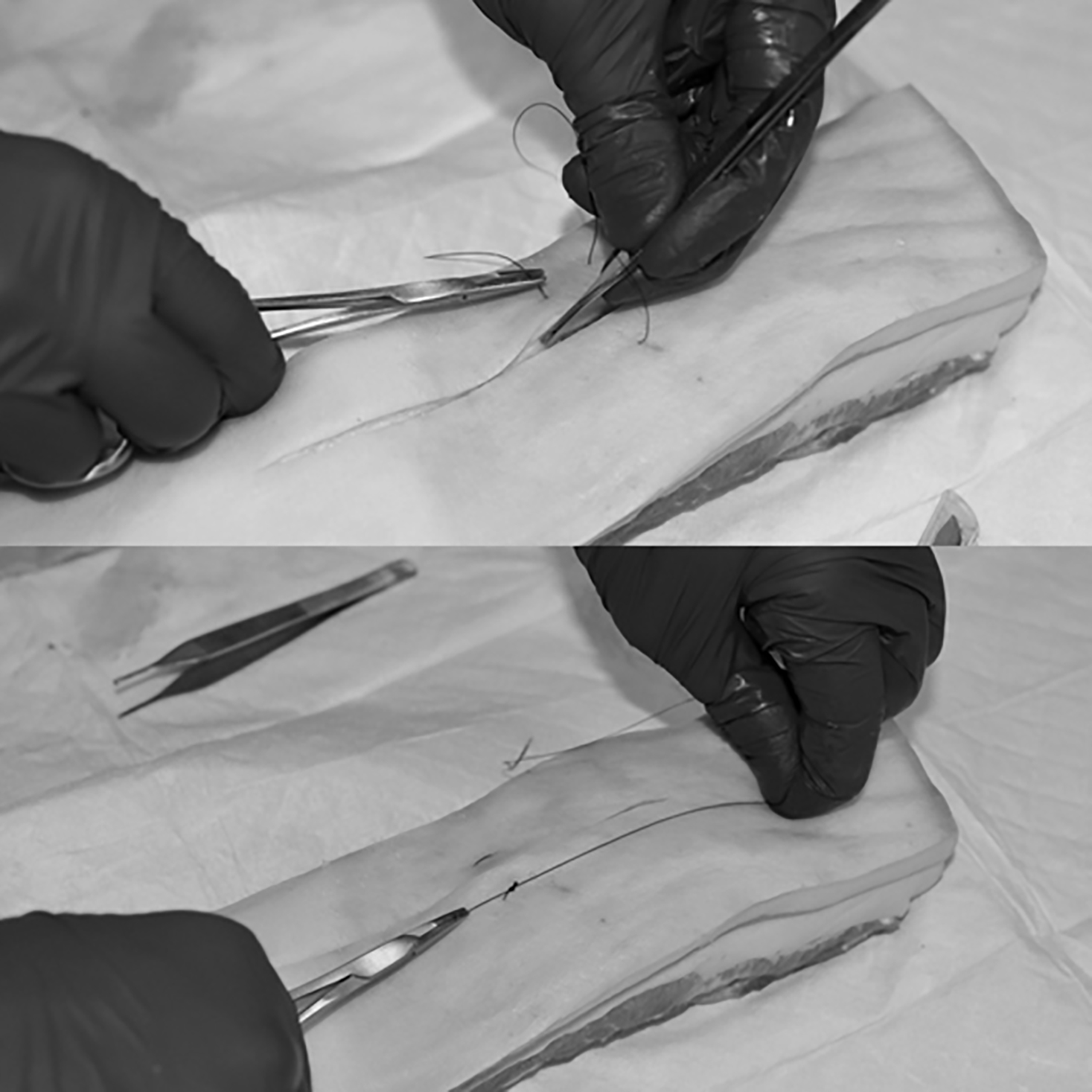 Placement of horizontal mattress sutures