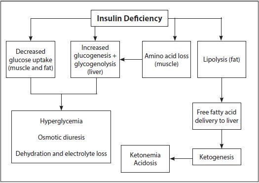 Diabetic Ketoacidosis | 2015-07-17 | AHC Media: Continuing Medical ...