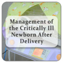 Management of the Critically Ill Newborn After Delivery